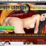 Ladyboy Ladyboy Special Discount