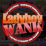 Ladyboy Girlfriends Gallery