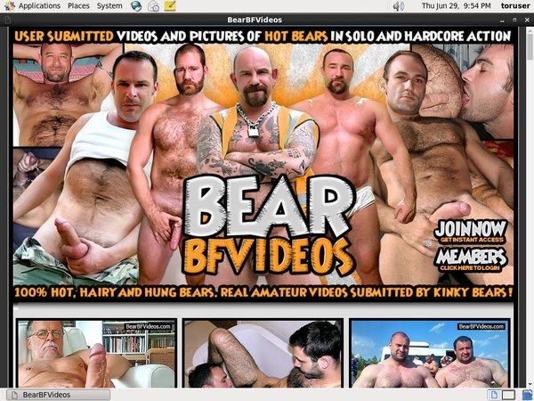 Bear BF Videos Passwords
