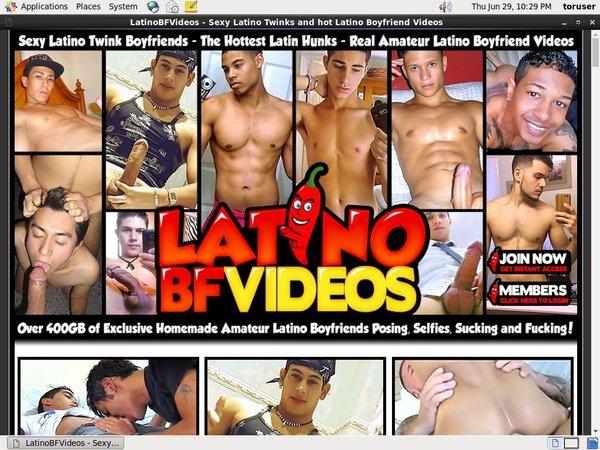 Latinobfvideos.com Pay Pal Account